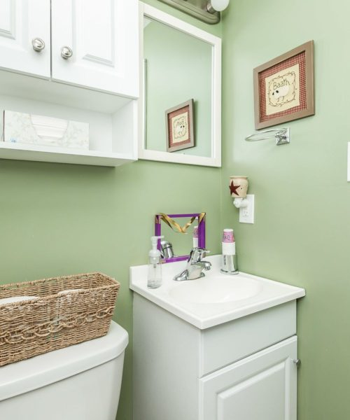 32 Left Wing Drive bathroom vanity
