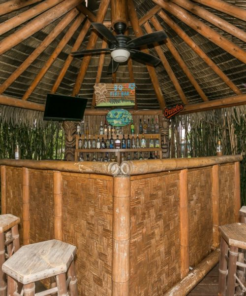 3919 Briar Point Road tiki bar