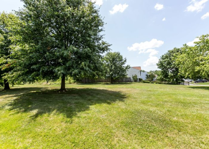 35 Nakota Ct., green area with trees