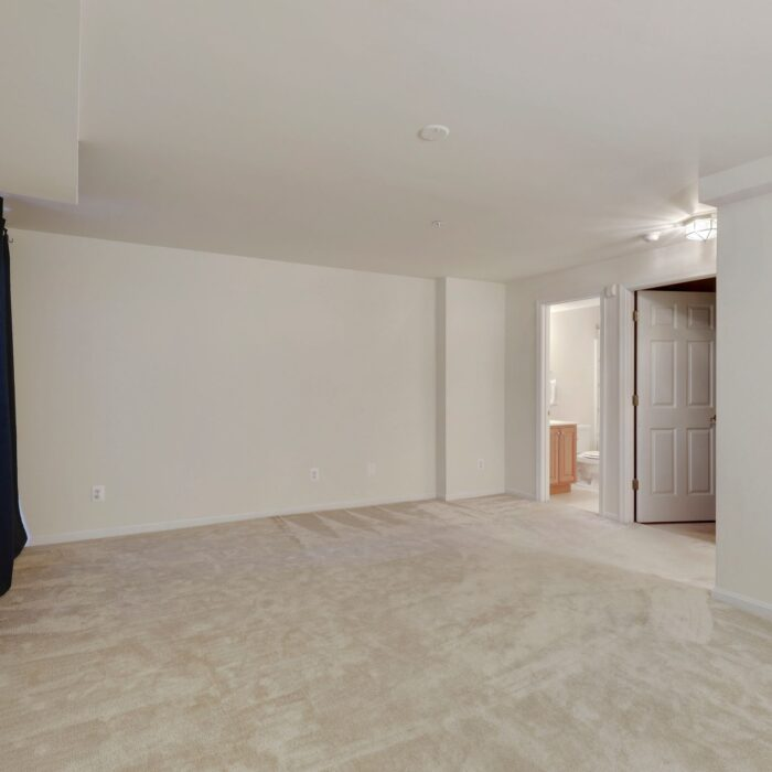 454 Deer Hill Circle, large room in lower level